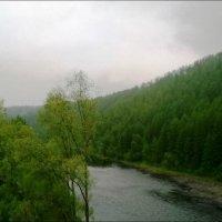 туман :: Анастасия Братчикова