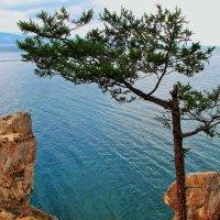 Озеро Байкал. Остров Ольхон. :: Лариса Мироненко