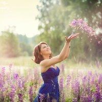 люпиновый рай :: Ольга Челышева