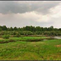 Перед грозой. :: Виталий Виницкий