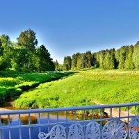 Лето в Павловском парке :: Вячеслав Губочкин