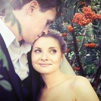 Рябиновые гроздья :: Darya Guvakova