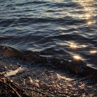 Солнышки в воде :: Tanika Неделенко