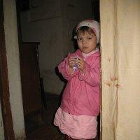 Деревенская девочка :: Владислав Лопатов