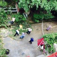 Стихия в Сочи. Второй день. 26 июня 2015 :: Tata Wolf