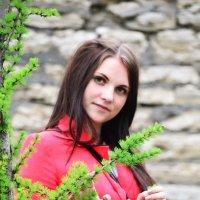Лето :: Анна Родихина