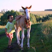 Покатай меня, лошадка... :: Евгений Юрков