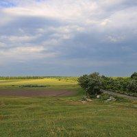 Среднерусская полоса, дорога ДОН :: галина северинова