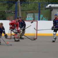 Хоккей на роликах :: Ирина Фирсова