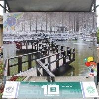 День Города ,выставка :: Наталья Золотых-Сибирская