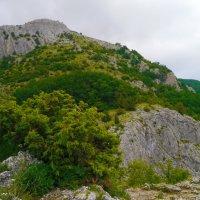 в горах Крыма :: Андрей Козлов