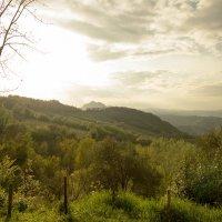 На холмах Северной Италии... :: Никита Юдин
