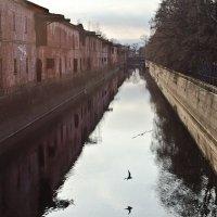Обводный канал :: Станислав Гераськин