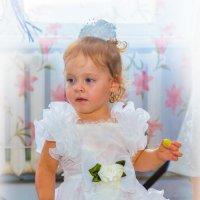 Будущая невеста на свадьбе....))))) :: игорь козельцев