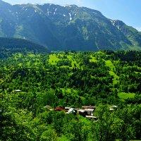 Долины Причерноморья (Турция) :: Валерий Живило