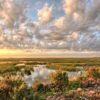Вечер у залива :: Сергей Григорьев