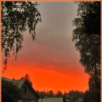 оранжевая лужа :: Дмитрий Анцыферов