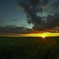 Последние лучи уходящего дня. :: Dmitri_Krzhechkovski Кржечковски