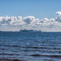 Финский залив :: Михаил Вандич