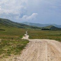 длинный и извилистый путь :: lev