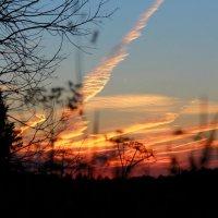 Летний закат :: Андрей Соловьёв