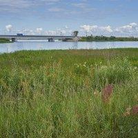 Ленинградское шоссе. Мост через р.Шоша. :: Михаил (Skipper A.M.)