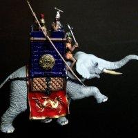 Боевой слон. :: Елена