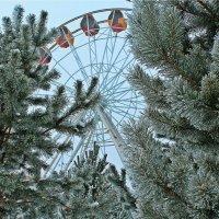 зима :: Олег Белан