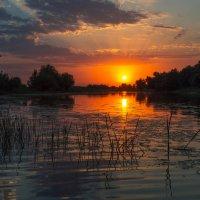 Один закат не похож на другой, краски неба не бывают одинаковыми .... :: Алена Рыжова