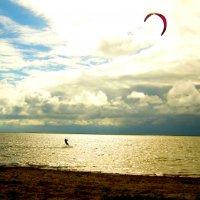 Wind speed :: Маргарита Serebryakova