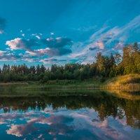 Пейзаж :: Ольга Осовская