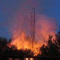 свидетельство пожара :: Елена