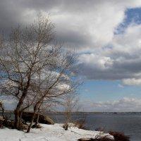 Начало весны :: Dr. Olver  ( ОлегЪ )