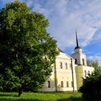 старый Аркадьевский монастырь в г. Вязьма :: Ирина Кочкарева