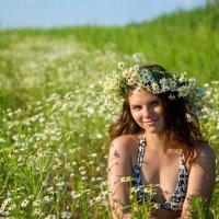 Ромашковое лето :: Татьяна