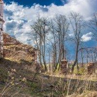 На развалинах :: Elena Ignatova