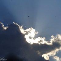 В облаках :: °•●Елена●•° ♀