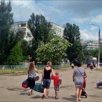 Дамские сумочки... :: Нина Корешкова