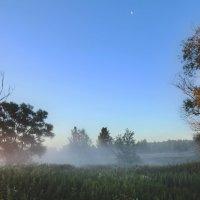 Утро раннее :: sergej-smv