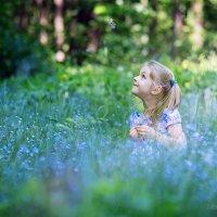 В лесу :: Наташа Морозова