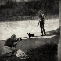 про  собачку и птичку :: sv.kaschuk