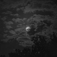 Луна :: Айк Авагян(haykavagian)