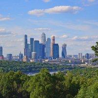 Москва с Воробьёвых гор :: Наталья Левина