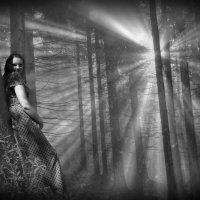 В лесу :: Сергей Быковский