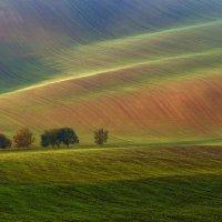 Осень в Моравии :: Андрей Лукашенко