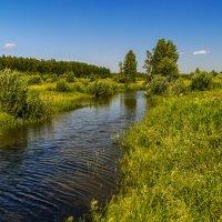 Река Дрезна :: Андрей Дворников