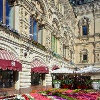 Москва. Цветочный ГУМ :: Елена Данилина