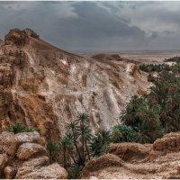 Горный оазис Шебика.Сахара.Тунис... :: Александр Вивчарик