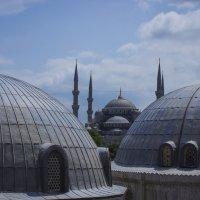 Sultanahmet Camii (Голубая мечеть) :: Василий Клементьев