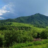Природа Белокурихи :: Вера Андреева